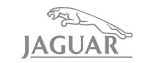 Jaguar Logo Client Project