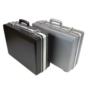 ABS Cases